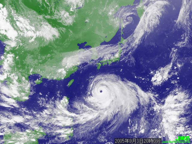 A japanese hurricane?