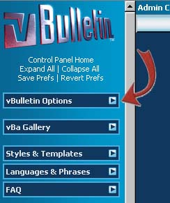 vBulletin and vBOptions
